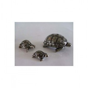 tortue-miniature-animal-laud1
