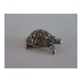 tortue-moyen-miniature-animal-laud12003
