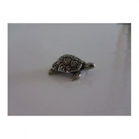 tortue-petit-miniature-animal-laud1167